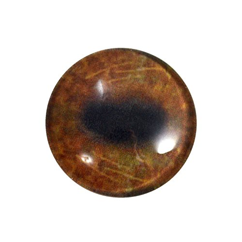 30mm Moose Glass Eye for Taxidermy Sculptures or Jewelry Making Pendants Crafts Art Doll Wire Wrapping DIY Flatback Cabochon ()