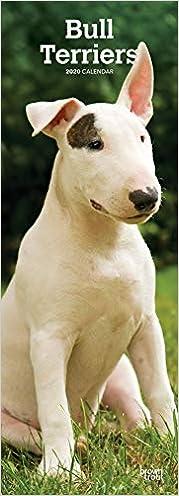 Livre en ligne pdf Bull Terriers 2020 Slimline Calendar