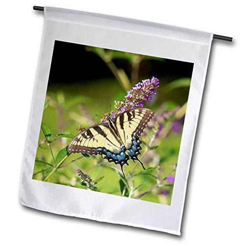 3dRose Danita Delimont - Butterflies - Eastern Tiger Swallowtail on Butterfly Bush, Illinois - 18 x 27 inch Garden Flag (fl_314820_2)