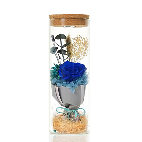 BABALI Preserved Rose RGB LED Lights Decoration Real Natural Fresh Handmade Never Withered Rose Preserved Flowers in Glass Jar Gift for Valentine Mother's Day Wedding Birthday Anniversary (Blue Rose)