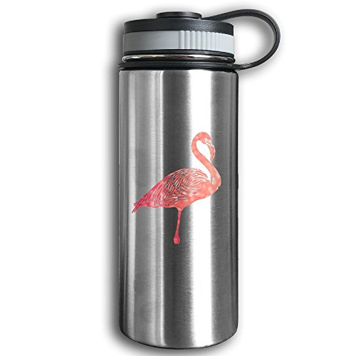 Stainless Steel Sports Water Bottle, Double Wall Vacuum Insulated Retro Flamingo Sport Bottle – Leak & Sweat Proof Flask - Cold/Hot Drinks For 12 Hours (Making Halloween Drinks Smoke)