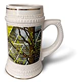 3dRose Alexis Photography - Objects - Oak tree with fresh leaves, solar power panel in the background - 22oz Stein Mug (stn_290827_1)