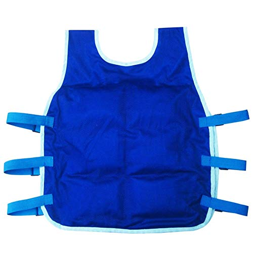 Summer Cooling Vest ICY Vest with 24PICS Ice Packs and Insulated Bag for Men and Women for Fishing,Cycling,Running,Cooking