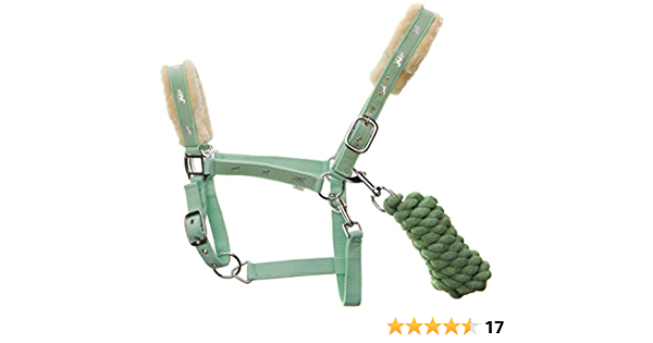 ADJUSTABLE PADDED CROWN PARROT GREEN COLOR FOAL NYLON HALTER I LOVE MY HORSE