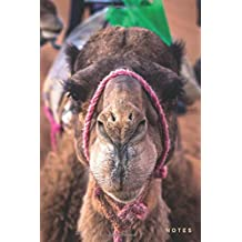 Notes: Lined Notebook Journal | Cute Camel in Morocco