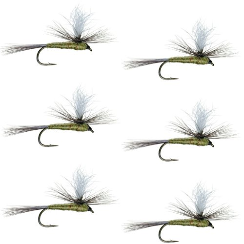Flies Trout Parachute (The Fly Fishing Place Parachute Blue Winged Olive BWO Classic Trout Dry Fly Fishing Flies - Set of 6 Flies Size 18)