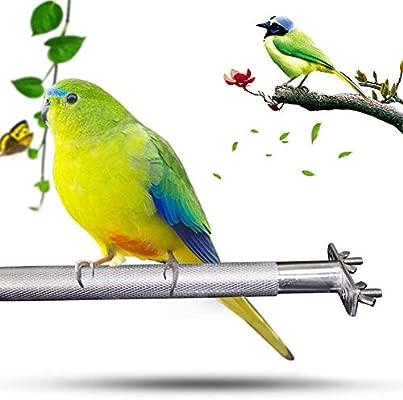 Percha Loro 28 CM Birdcage Stands Bird Perch Parrot Pájaro De ...