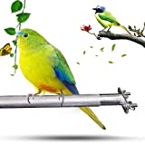 Coaste Birdcage Stands, Bird Perch Parrot Stainless Steel Bird Standing Rod Bird Supplies, Teether Cage Tool 28CM, Bird Cage Perch for Parrot Cages Toy