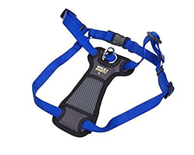Coastal Pet Walk Right! Front-Connect Padded Dog Harness by Coastal Pet