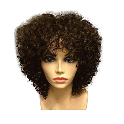 YLWIG Afro Kinky Curly Wig for Black Women Short African Wigs Synthetic Headwear with Free Wig Cap (8
