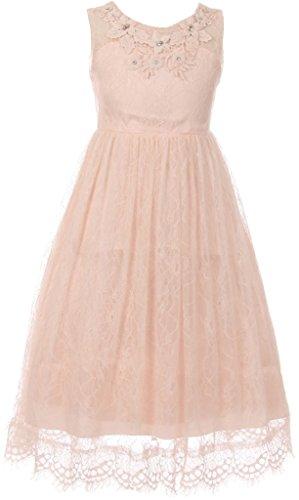Big Girls Dress Dressy Lace Rhinestones Princess Flower Girl Dress Blush 8 (C50C36C)