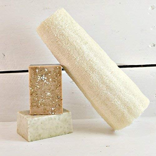 8 Inch Loofah | Loofah Sponge | Natural Loofah | Large Luffa | Body Cleansing | Body Care | Spa Gift | Spa Party