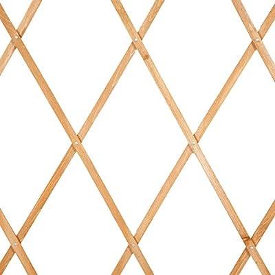 Botanico expandiéndonos enrejado madera FSC JAMMYLIZARD 180 x 30 ...