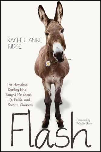 Flash: The Homeless Donkey Who Taught Me about Life, Faith, and Second Chances (Flash the Donkey) by [Ridge, Rachel Anne]