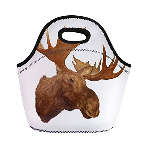 Semtomn Neoprene Lunch Tote Bag Taxidermy Moose Head Antler White Animal Trophy Big Rack Reusable Cooler Bags Insulated Thermal Picnic Handbag for Travel,School,Outdoors, Work