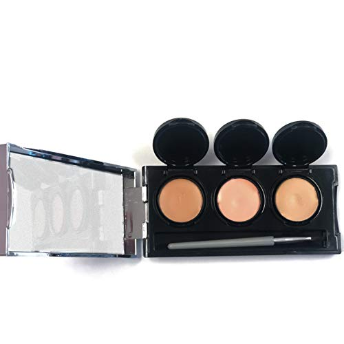 Full Coverage Concealer Cream by Dermaflage, 3 in 1 Pro Concealer Palette, Waterproof Face & Body Concealer, Blendable Formula for Perfect Match. 3 Colors + Concealer Brush, 6.9g/.24oz (Medium)