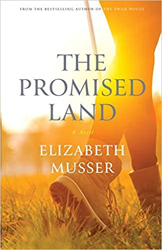 Promised Land The Swan House Series Musser 9780764234453 Amazon Com Books
