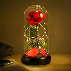 Beauty and the Beast Rose, Enchanted Red Silk Rose with Fallen Petals in Glass Dome on a Wooden Base Best Gift for Home/Office or Home Decorations, Anniversary, Birthday Gift, Mother's Day Gifts 38