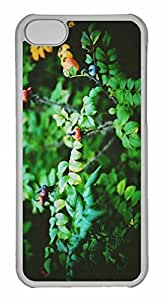 iPhone 5C Case, Personalized Custom Evening Walks for iPhone 5C PC Clear Case