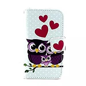 DD Couples Owls Pattern PU Leather Full Body Case with Stand and Card Slot and Money Holder for iPhone 4/4S