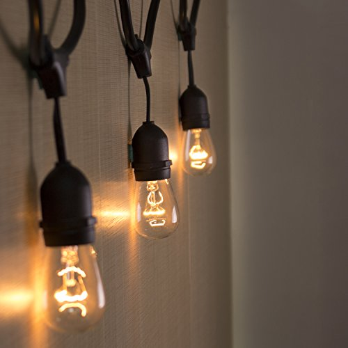 Long Hanging String Lights : AMLIGHT Outdoor Commercial String Lights 24 Feet Long with 12 Hanging Dropped Sockets- 12 S14 ...