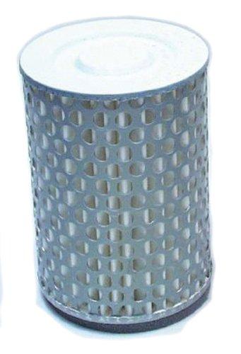 Hiflofiltro HFA1402 Premium OE Replacement Air Filter