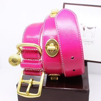 """COACH Gold Turnlock Grommets Leather Collar with Engraveable Charm 60095 Limited Edition - Gold/Pink, X-Large (22""""-26"""")"""