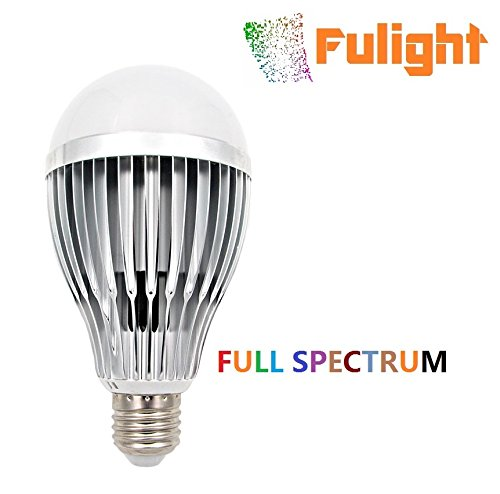 Led Light Bulbs For Artwork