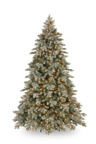 "National Tree 7.5 Foot ""Feel Real"" Frosted Colorado Fir with 750 Clear Lights (PECSF1-300-75)"