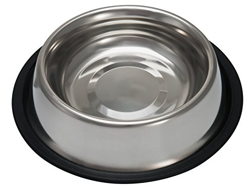 Bowl Bowl Bella Dog (Loving Pets Standard No-Tip Dog Bowl, 16-Ounce)