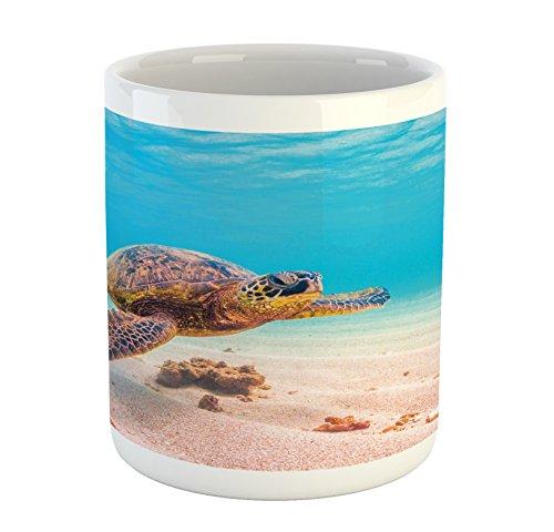 - Ambesonne Turtle Mug, Hawaiian Green Sea Turtle Cruises in Warm Waters of The Pacific Ocean Photo, Printed Ceramic Coffee Mug Water Tea Drinks Cup, Aqua Cinnamon Brown