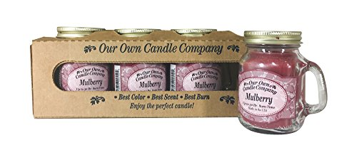 Our Own Candle Company Mulberry Scented Mini Mason Jar Candle, 3.5 Ounce (4 Pack) ()