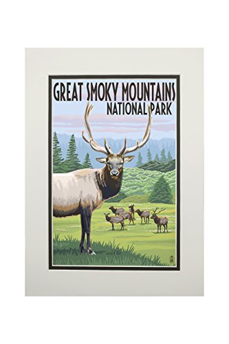Great Smoky Mountains National Park - Elk Herd (11x14 Double-Matted Art Print, Wall Decor Ready to Frame)