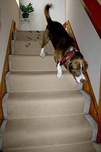 (LAMINET Non-Slip Carpet & Floor Protector - Beige - 6'L x 30