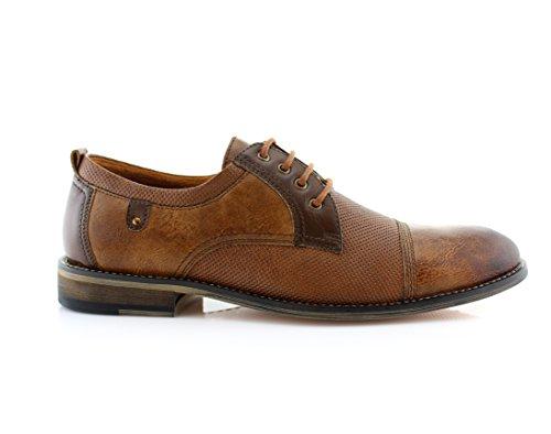 Ferro Aldo Mens Oxfords Classique Moderne Captoe Robe Chaussures Marron 896