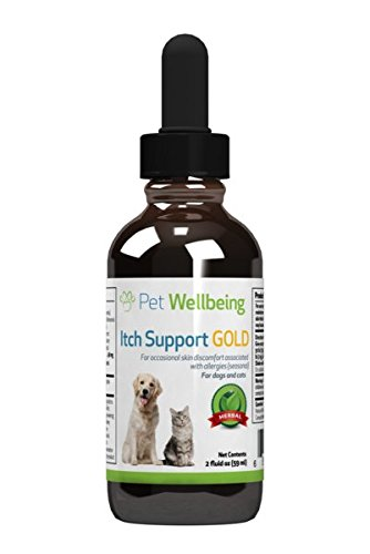 Itch Remedy - Pet Wellbeing - Itch Support Gold for felines - Natural Skin Allergy support for Cats - 2oz (59ml)