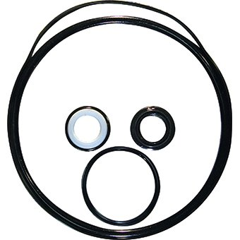 Amazon pool pump seal repair kit for hayward super ii kit 2 pool pump seal repair kit for hayward super ii kit 2 sciox Image collections