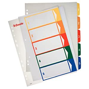 Leitz 100211 - Pack de 20 indices imprimibles