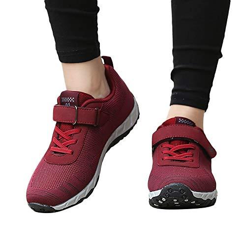 dbc2d0c5a436e Oliviavan Women's Leisure Mesh Sport Shoes,Ladies Breathable Non ...