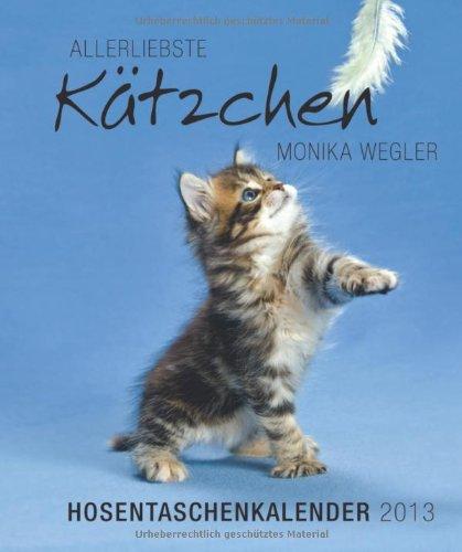 ktzchen-hosentaschenkalender-2013