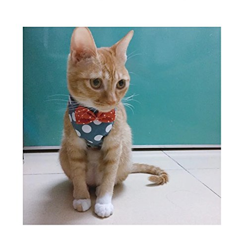 Stock Show Cat/Dog Walking Jackets Cat Vest Harness and Matching Lead Leash Set with Cute Bowtie Detachable Leash Pet Reteo British Style Harness for Small Mediums Dogs Puppy Cats Kitten, Blue, S]()