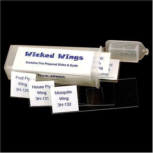 Wicked Wings Prepared Slide Set