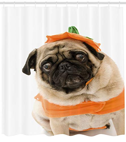 Lunarable Pumpkin Shower Curtain, Pug with a Pumpkin Costume for Halloween Trick or Treat Cute Animals Photo, Fabric Bathroom Decor Set with Hooks, 75 inches Long, Ivory Orange Black