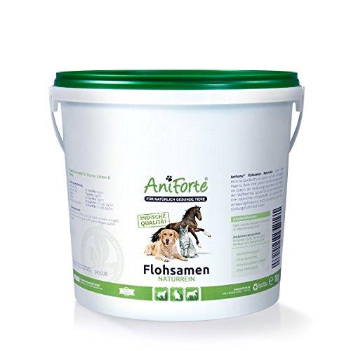 AniForte Indische Flohsamen Naturrein 1kg- Naturprodukt für Hunde, Katzen und Pferde