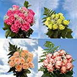 16 Dozen Assorted Color Roses & Fillers Wholesale