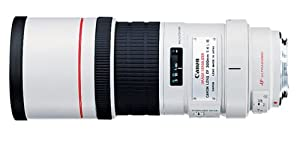 amazon com canon ef 300mm f 4l is usm telephoto fixed lens for