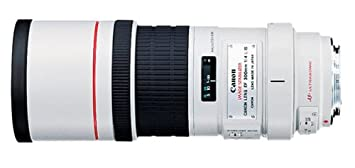 Review Canon EF 300mm f/4L