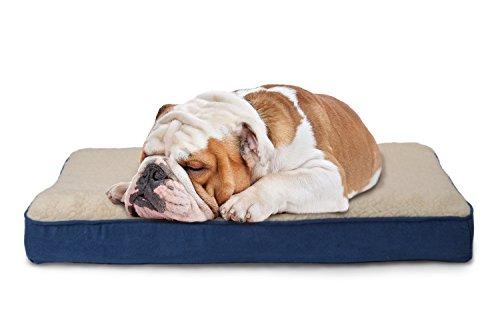 Furhaven Pet Dog Bed | Memory Foam Faux Sheepskin & Suede Mattress Pet Bed for Dogs & Cats, Navy, Medium ()