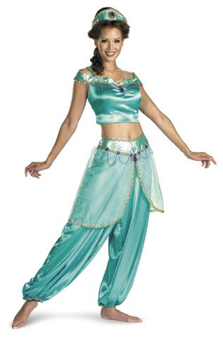 Aladdin Jasmine Deluxe Adult Costume Size Large (Best Halloween Costumes Of 2000)