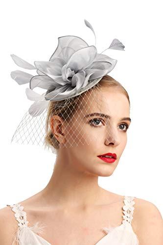 Cizoe Fascinators Headband for Women Tea Party Hat Kentucky Derby Wedding Flower Mesh Feathers Hair Clip(2-silver grey) ()